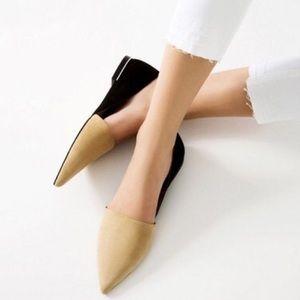 Zara Colorblock Pointed Toe Flats